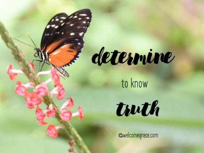 determine to know